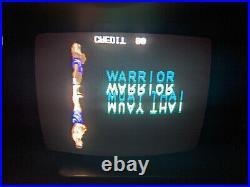 Sega Holosseum Arcade CPU Circuit Board, PCB, Boardset, Working Jamma Very Rare